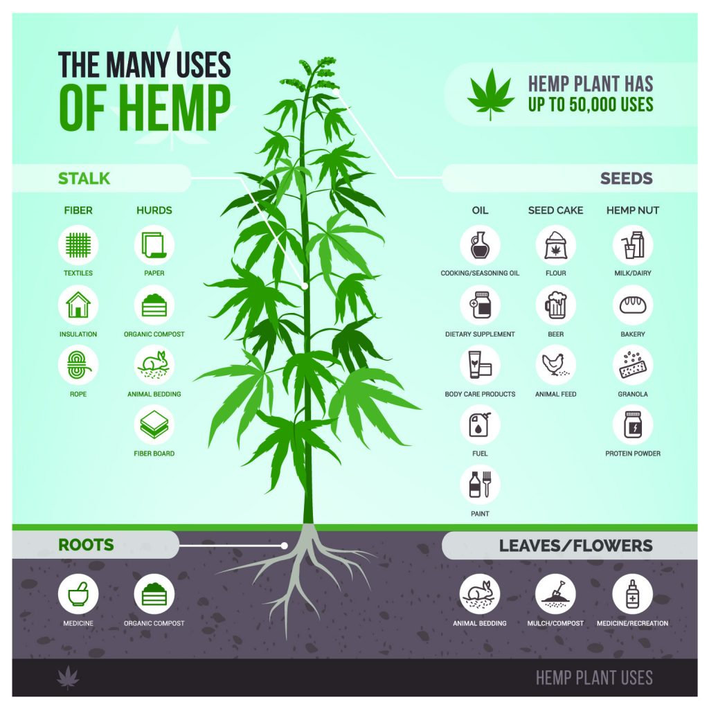 Uses of Hemp